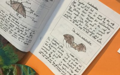 Year 6 Research Animals